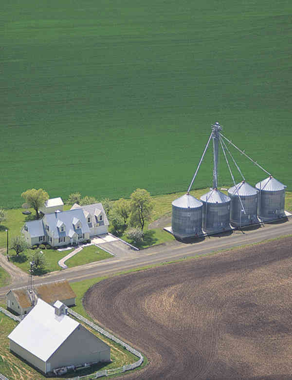 Sm Farm